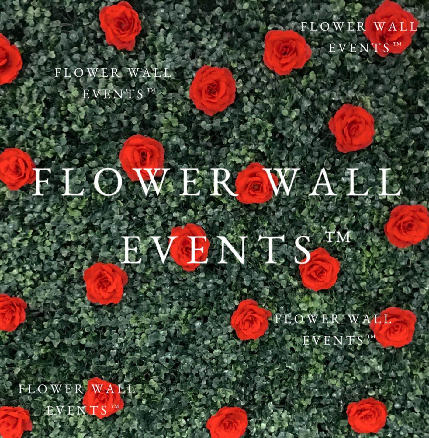 flower wall hire melbourne red roses