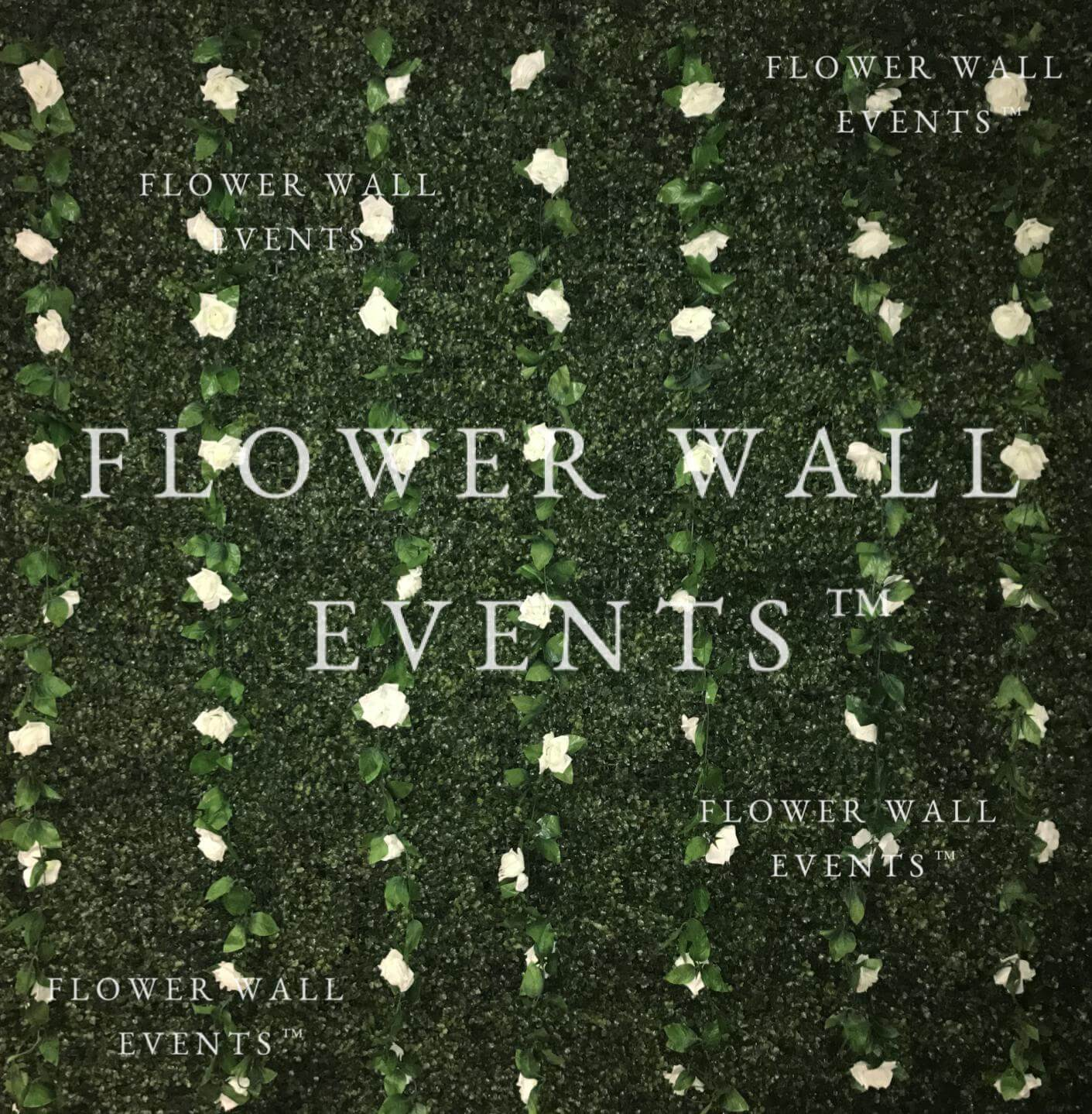 flower wall hire melbourne white roses